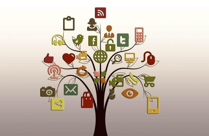 ganar seguidores en las redes sociales