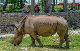 el zoo más antiguo