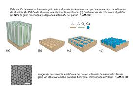 biosensores microconductores