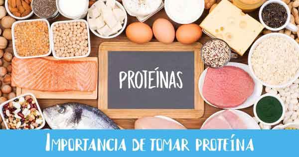 importancia de tomar proteinas